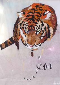applikált tigris