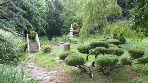 A japánkert